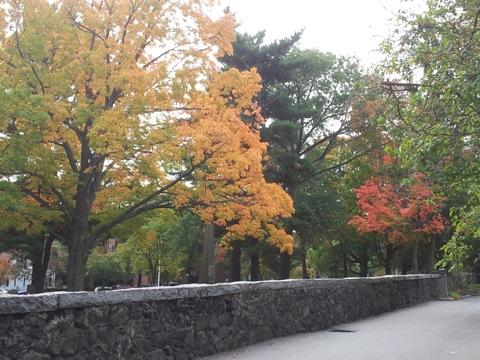 Fall2013 3