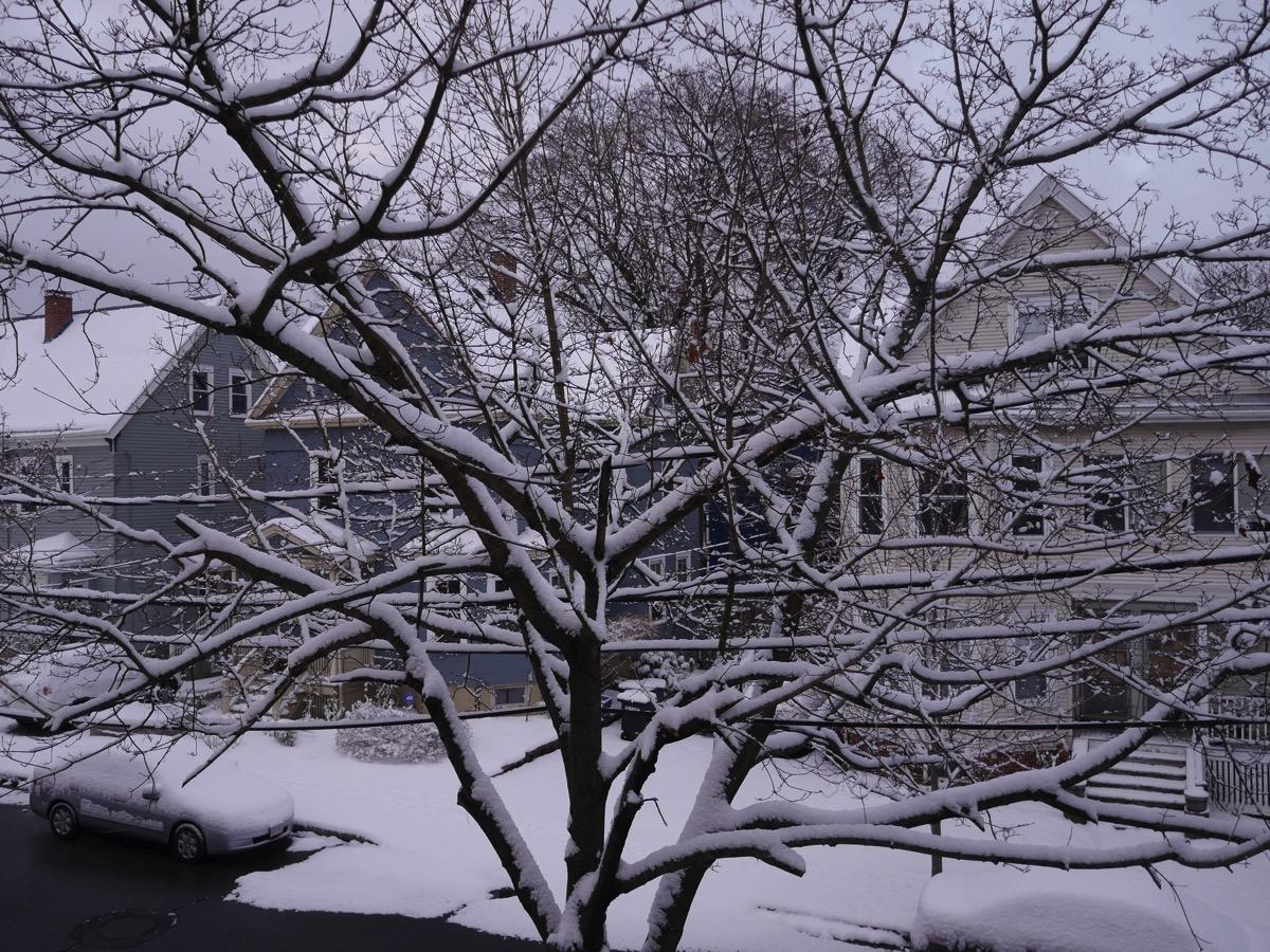 Snowjan16